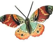 "Butterfly Metal Wall Decor- 22"" Painted Metal Outdoor Garden Art - Recycled Steel Drum Metal Art - Tropical Decor - Butterflies - 516-22-BR"