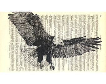 Flying Bald Eagle Large Vintage Art Print on Antique 1896 Dictionary Book Page