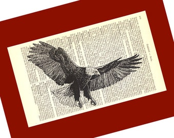 Flying Eagle Art Print on an Antique 1896 Dictionary Book Page