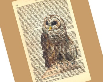 Little Owl Medium Art Print on Antique 1896 Dictionary Book Page