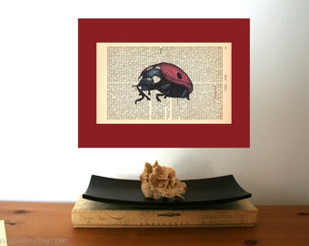 Ladybug Art Print on Antique 1896 Dictionary Book Page