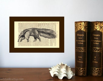 Anteater Art Print on Antique 1896 Dictionary Book Page