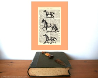 Three Horses Vintage Art Print on Antique 1896 Dictionary Book Page
