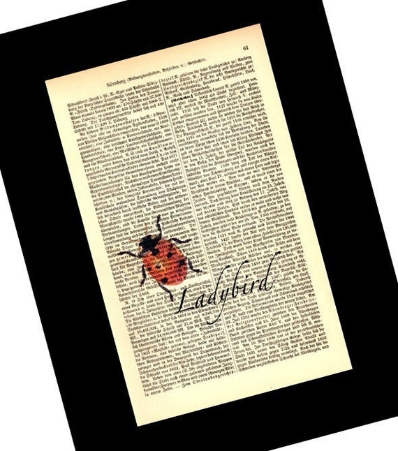Ladybird Vintage Art Print on Antique 1896 Dictionary Book Page