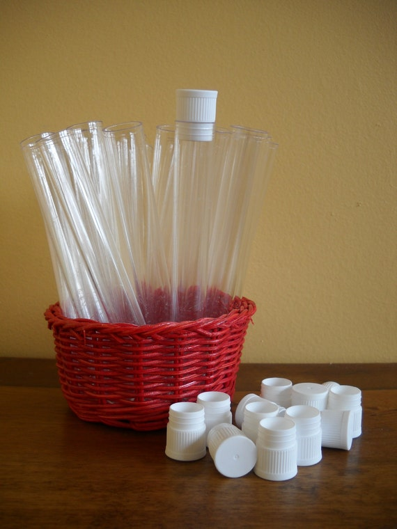 Plastic Test Tubes or Vials with Caps 2 Dozen Great for Favors & Organizing