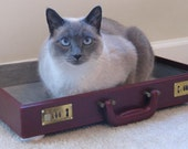 Briefcase pet bed with FREE pillow - cat not included