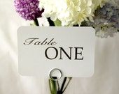 20 - Wedding Reception Table Number Cards - Pure; Table Tent Place Setting wedding signs wedding decor Table Names Special Events love 4x6