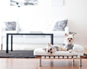 """Modern Pet Bed, daybed and lounger (Small Dog Bed / Cat Bed, 25""""x19"""")"""
