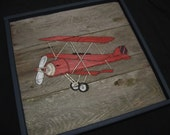 Custom Listing for Gina-Plane, Car and Bicycle Panels