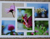 wishful daydreams / blank photo greeting cards - set of 5