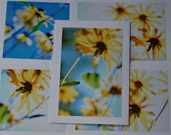 yellow roman candles / blank photo greeting cards - set of 5