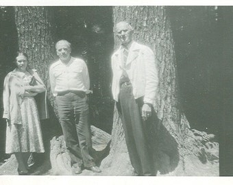 Two Guys and a Girl by the Trees- Vintage Photograph