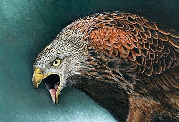 A4 PRINT 'The Red Kite'
