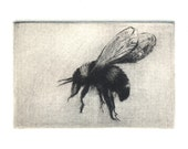 Bumble Bee image - As reserved for Jo Anne
