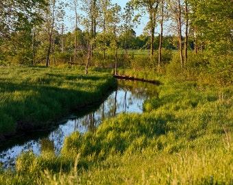 8x12 Photo Print: Country Creek