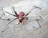 Titanium earring spider bunny wire sculpture