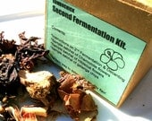 Kombucha Tea Flavoring Kit for Home Brewing - Galangal, Ginger, Lemongrass.