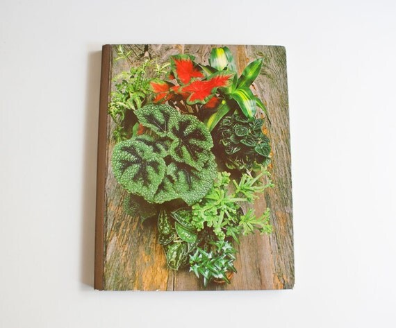 Vintage 1970s Houseplants Book