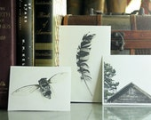 Three Little Minis - Three Miniature Fine Art Photographs - Custom Instant Art Collection