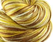 PRETZELS & BEER Superwash Merino/Nylon Fingering Weight Yarn