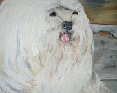 Havanese Dog Original Oil Painting Signed S.O. 1985 By Gatormom13