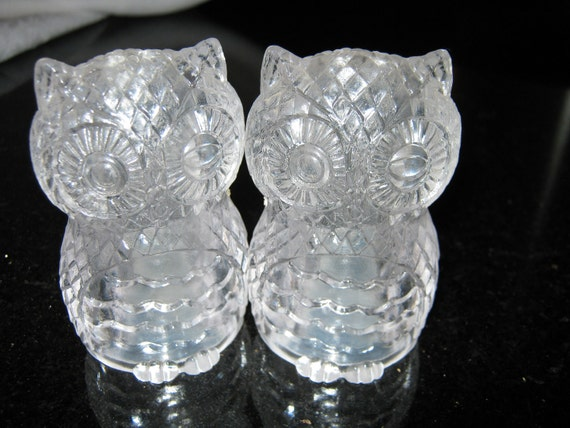Owl Salt and Pepper Shakers Lucite / Plastic By Gatormom13