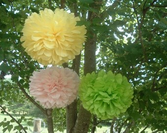 12 Tissue paper pom poms / Country Wedding decorations / Baby shower / Wedding anniversary / Bridal party / Party decorations.