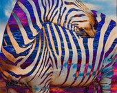 Liquid Zebra 8x10 Open Edition Print
