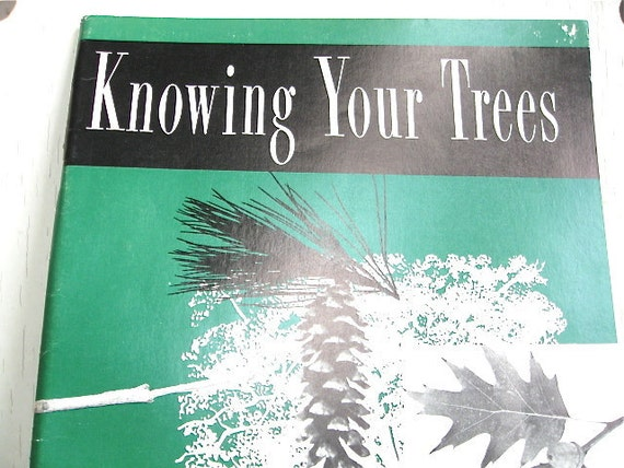 1964 Knowing Your Trees Handbook by the American Forestry Association