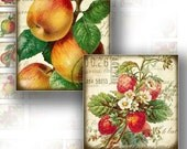 1x1 inch digital collage sheets for scrabble tiles Victorian fruit jewelry making paper supplies download graphics (093) BUY 3 GET 1 FREE