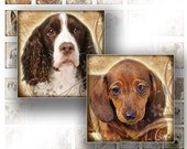 Dogs and puppies digital collage scrabble tile necklace jewelry making paper supplies altered art download image file (068) BUY 3 GET 1 FREE
