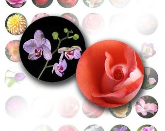 1 inch circle digital art collage sheet for bottle caps images jewelry making supplies download Colorful flowers (011) BUY 3 GET 1 FREE