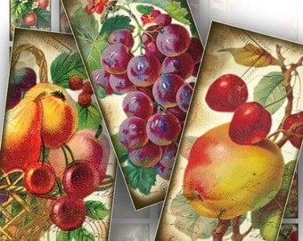Digital collage sheet domino tile Victorian fruit download file 1x2 inch rectangle necklace jewelry making supplies (096) BUY 3 GET 1 FREE