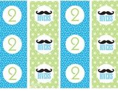 DIY Printable Personalized Little Man Birthday Cupcake Toppers Mustache Bash