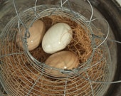 Wire egg basket - country farm shabby chic cottage decor