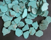 5 Str-- Blue Turquoise Slice Beads, Howlite Slabs 25x35mm- 56pcs- Central Drilled