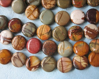 2 str -Colorful Picasso Jasper Round Coin beads 14mm -28pcs/Strand