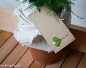 Gift tags - mistletoe - 12pc