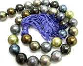 12mm Assorted Color South Sea Shell Pearl Beads - 16 Inch Strand