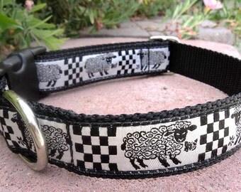 E Collar Border Collie Border collie collar  ...