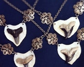 SALE - Land and Sea Valentine 1 - Shark Tooth & Heart Shaped Deer Bone with Vintage Silver Filigree Pendant Necklace
