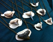 LAST ONE - Land and Sea Valentine 2: Shark Tooth & Deer Bone Pendant Necklace with Your Chain Choice
