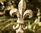 Rustic Fleur de Lis -- antique color tones, full color, black & white, or sepia
