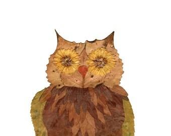 8x10 owl print