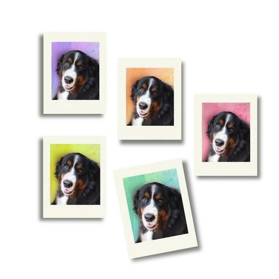 Your Noteworthy Pet Notecards