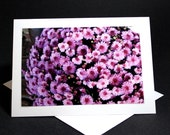 Lavender Mum note card