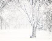 Gothic Winter Landscape Fine Art Metallic photo Print 8x12