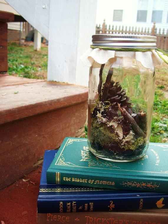 Moss Nature Terrarium in a Large Glass Mason Jar