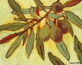 Olives art print/green olives artwork/Italy olives painting/olive tree wall art/kitchen art/olives giclee/ olives fine art/Four Olives/11x14