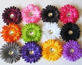 Baby girl hair clips and headbands set of 12 flowers and your choice of 3 crochet headbands  Super SAVER Deal